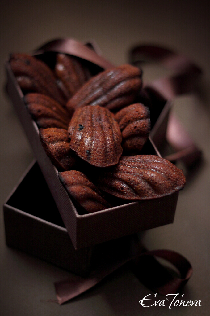 Chocolate and Coffee Madeleines